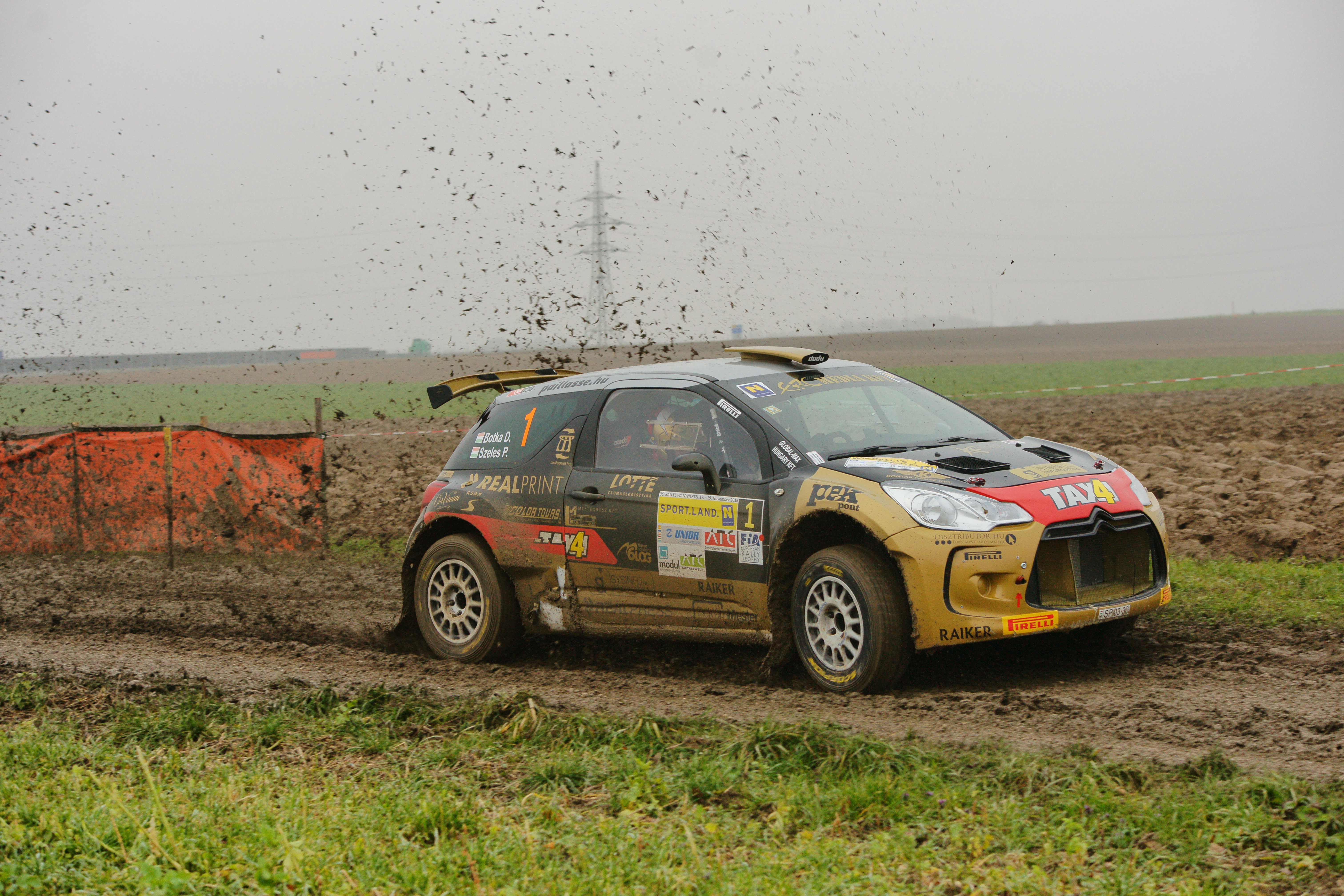 ERC aces carry on rallying